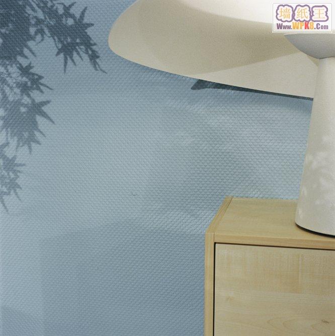 德国进口刷漆壁布爱福Vliesfaser威莎系列效果图欣赏德国进口刷漆壁纸VF0706RABES00148